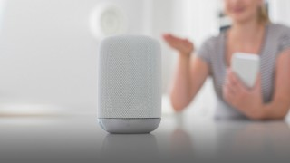 Insights Article - Voice assistants